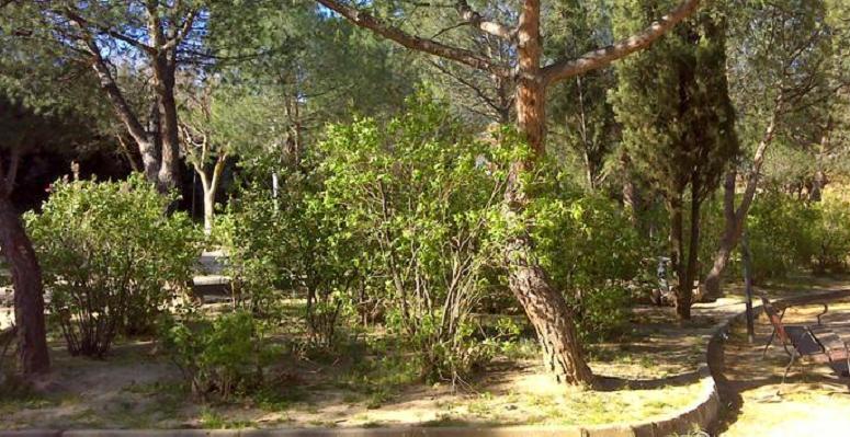 Parques jardines Villa